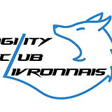 logo noir et bleu.jpg