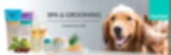 Diseño banner web