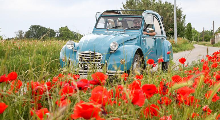 Yes Provence - 2CV Bleu-46.jpg
