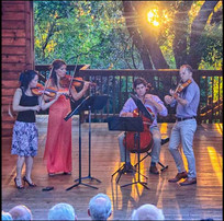 Surf and Sounds Chamber Music
