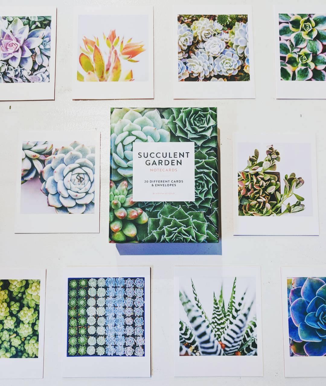 SucculentGardenNotecards