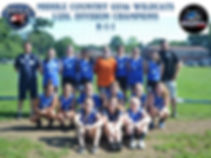 division champs spring 2019.jpg