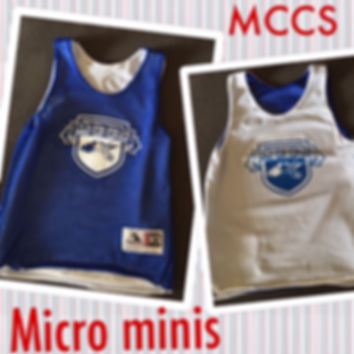 micro mini pinnie.JPG