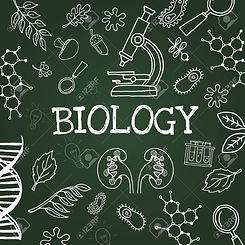 66089131-vector-chalk-draw-biology-eleme