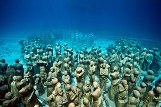 vida marinha está à beira da extinção em massa
