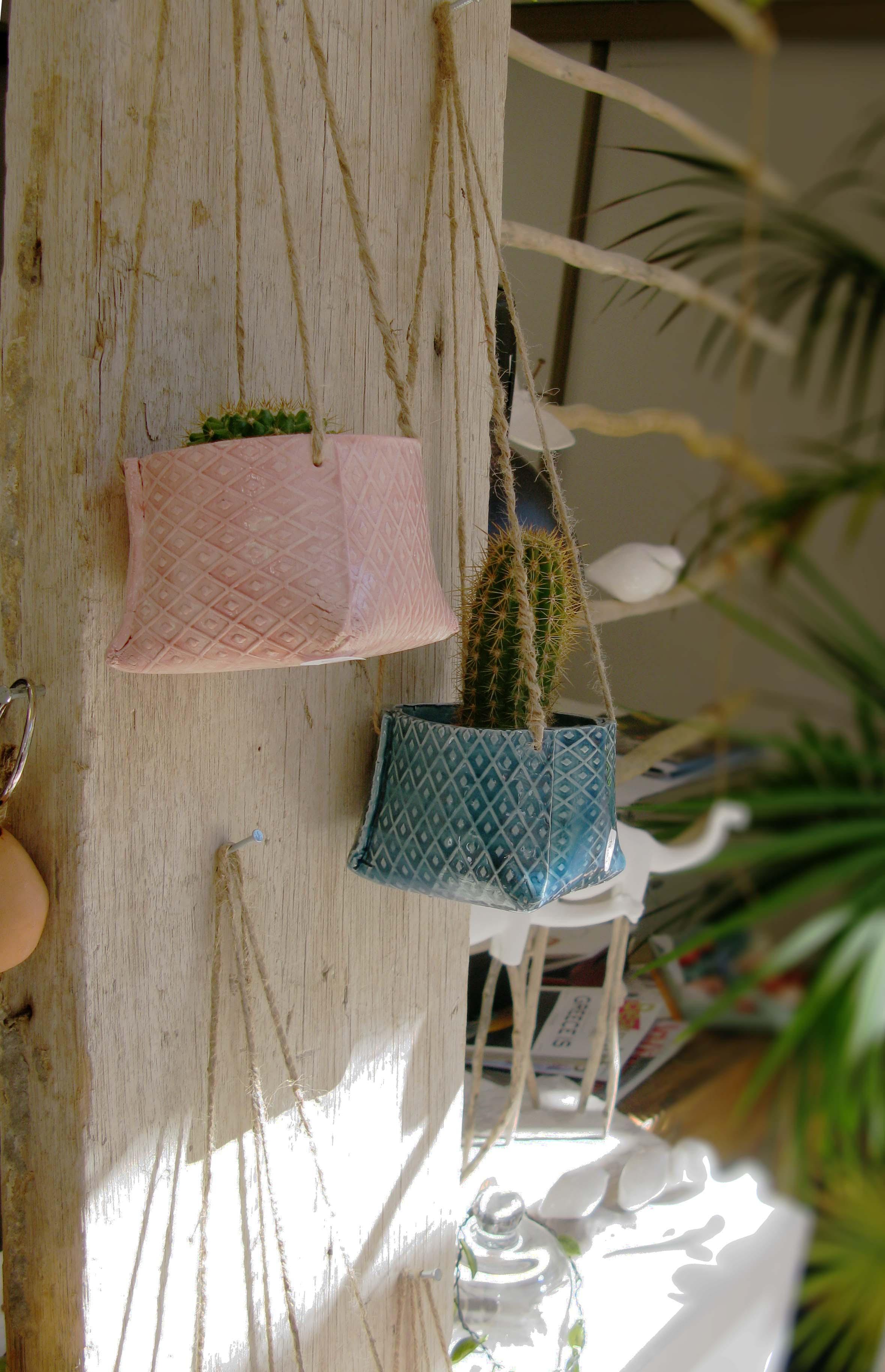 vases cactus