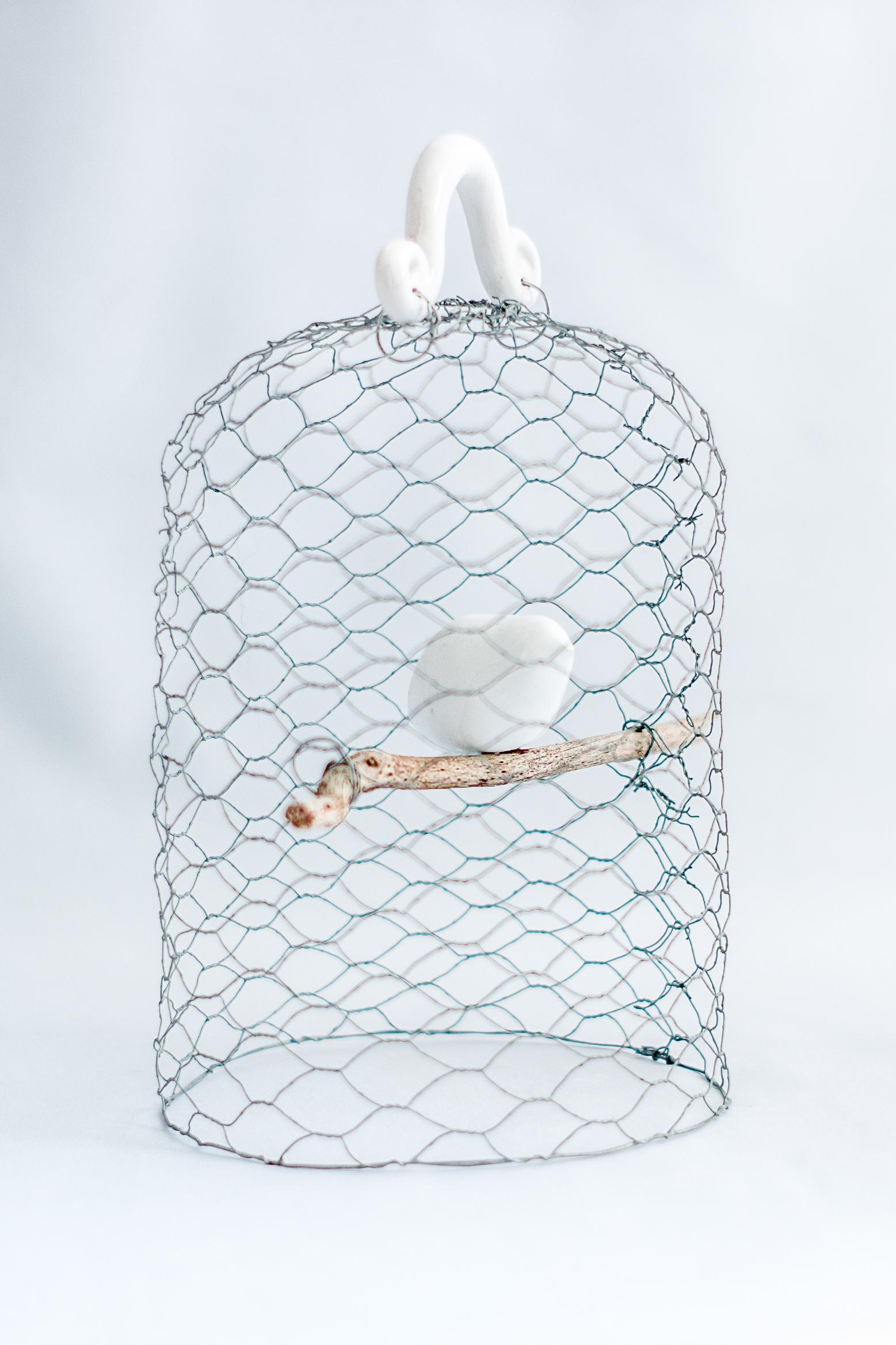 cage a l'oiseau (1 of 1)
