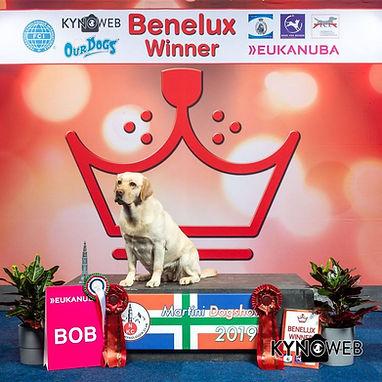 Liv Benelx Winster