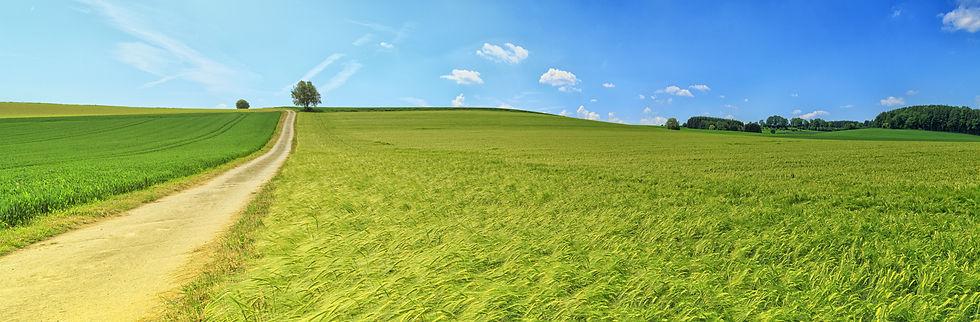 panorama-3629120.jpg