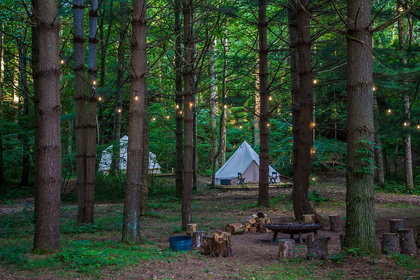 Tent Glamping in the Woods.jpg