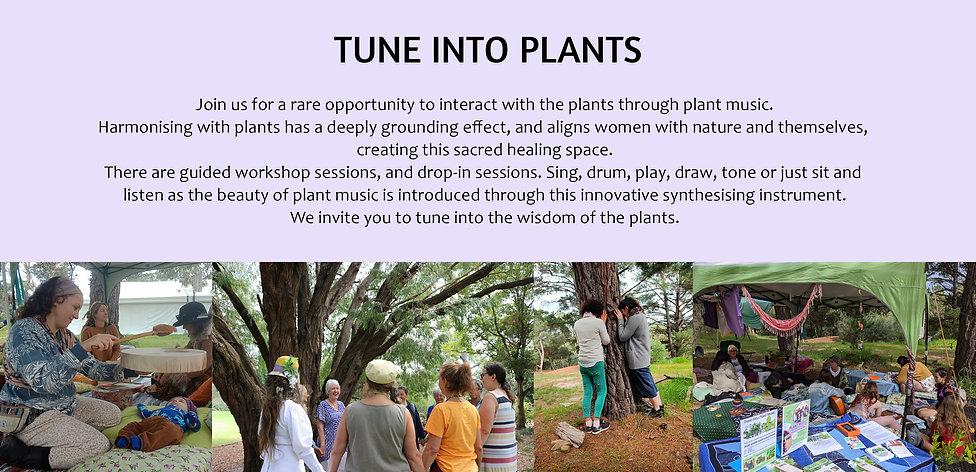 TUNE INTO PLANTSb.jpg