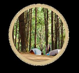 camping GOLD CIRCLE.png