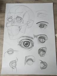 Vanesa Farkašovská- lebka a oči- 4.2.I..