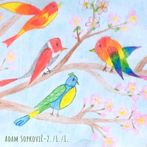 Adam Sopkovič- vtáčiky-2.1.I..png