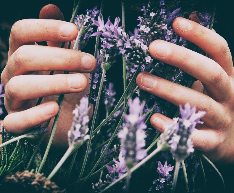 Relaxing lavendar