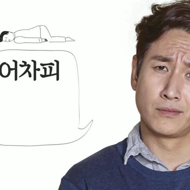 TV show / JTBC / MBC