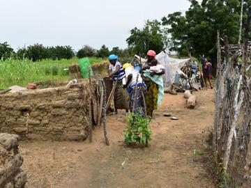Country Case Studies: Burkina Faso