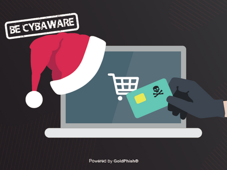 Credit Card fraud: Tips to avoid it this Christmas