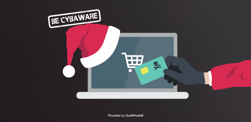 Credit Card Fraud Tips To Avoid It This Christmas