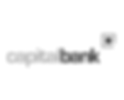 CapitalBank_Grey.png