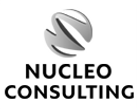 Nucleo_Consulting.png