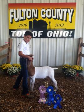 Wyatt Borer, Reserve Grand Market Goat F