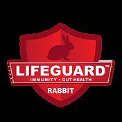 Rabbit Lifeguard-01.png