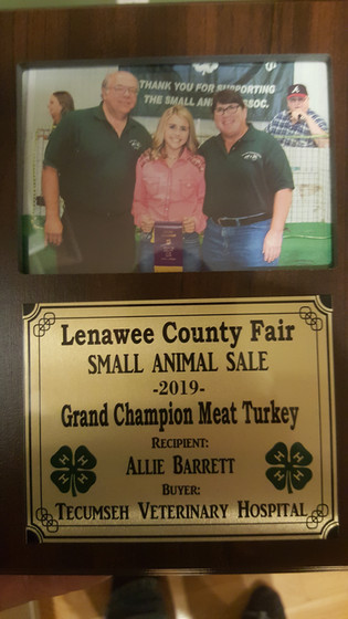 Allie Barrett Lenawee County, MI.jpg