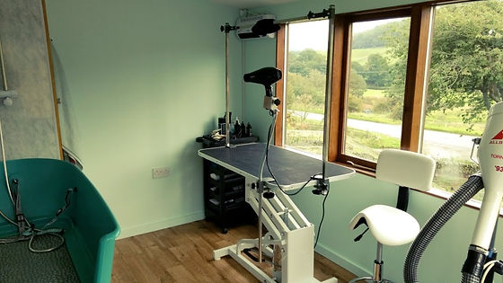dog grooming little dog cabin Galashiels