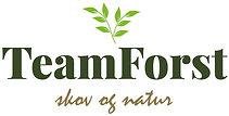 1906-TeamForst-logo-05.jpg