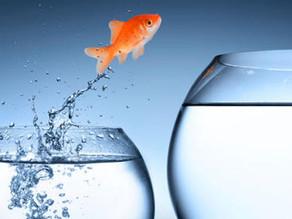 Corra o risco de mudar