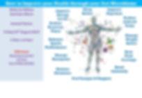 Microbiome Talk Flyer Sam Totnes.jpg