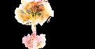 Devon Mala Tree logo 1 PNG no tagline.pn