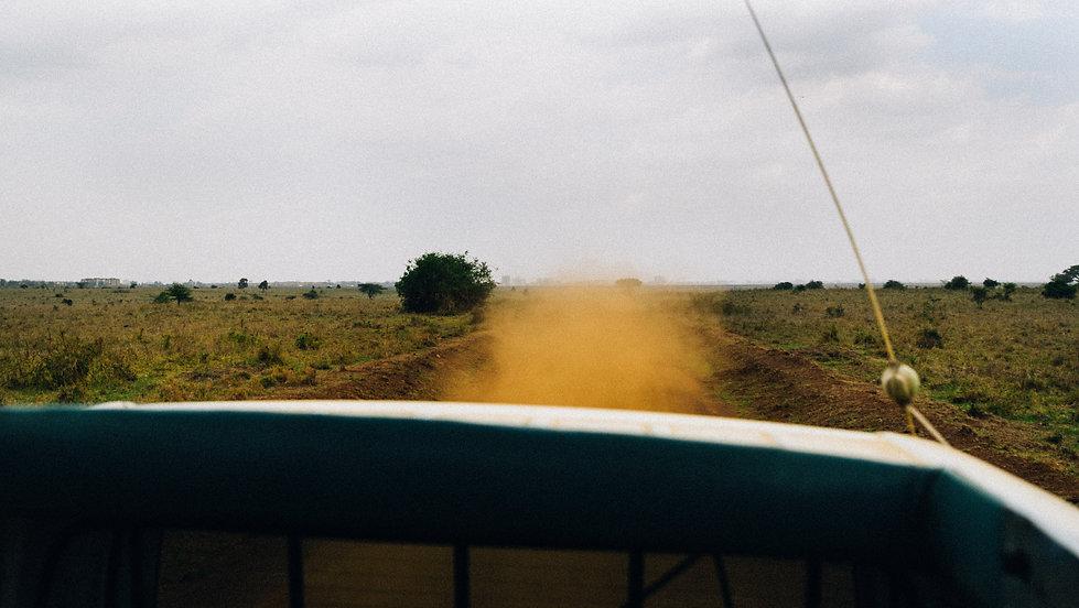 dust (1 of 1).jpg