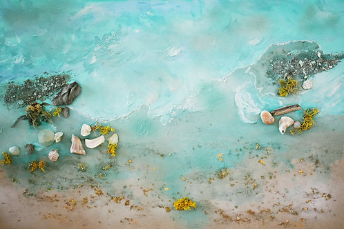 "Shells in Aqua Waters | 36""x24"" 