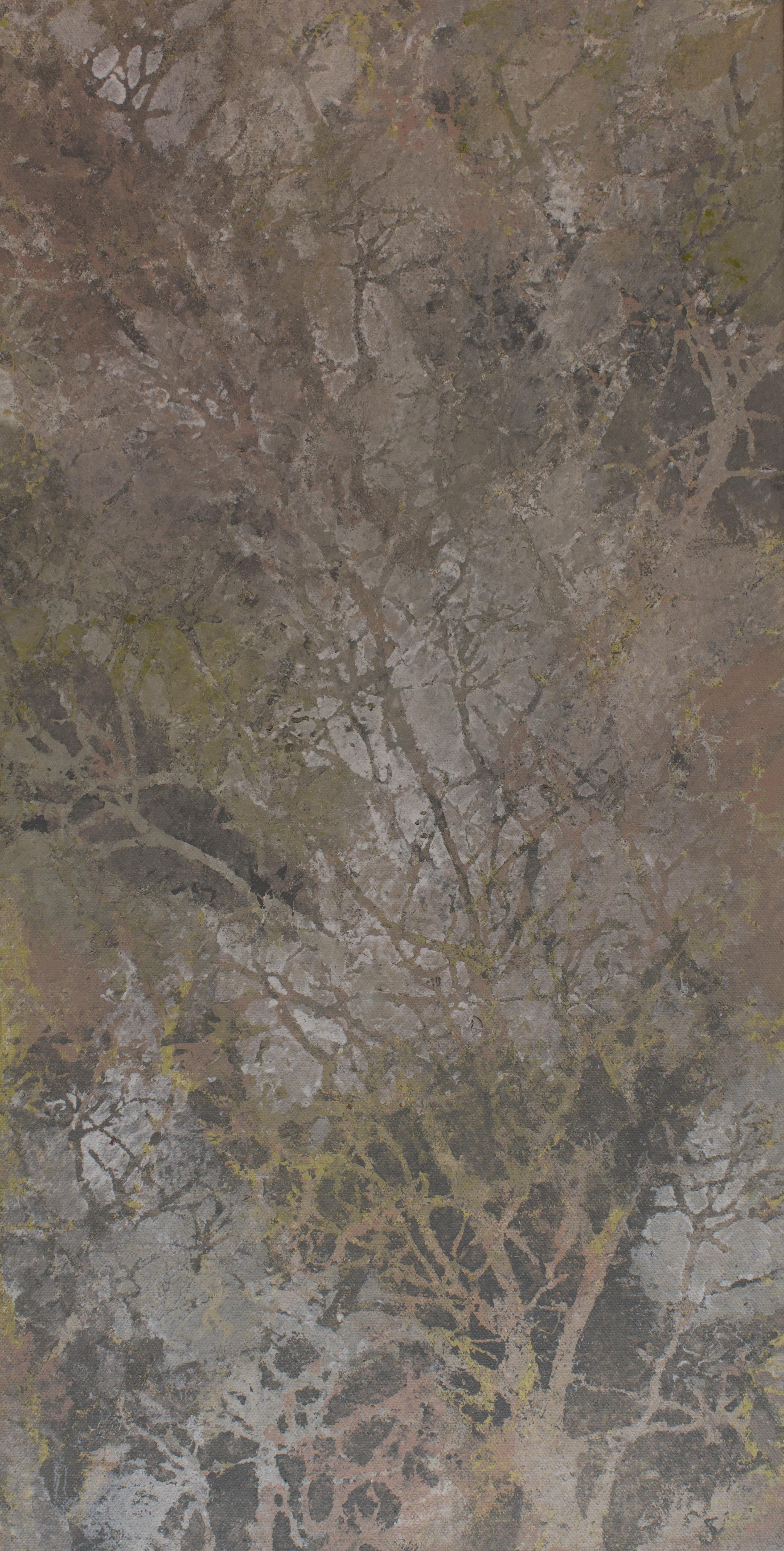 Trees I 12 x 24 2013