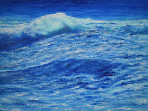 """Race to the Shore 