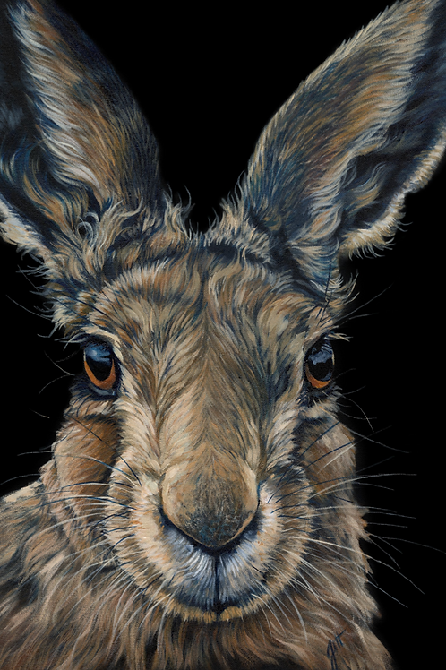 'Hares to You'
