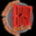 Bayz tasarım logo