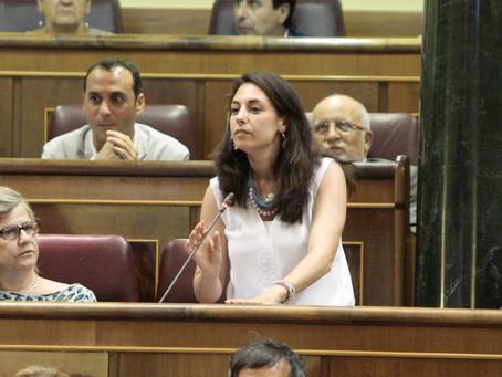 El PSOE de Jaén reitera la necesidad de que el Gobierno apruebe un Plan Especial de Empleo para la p