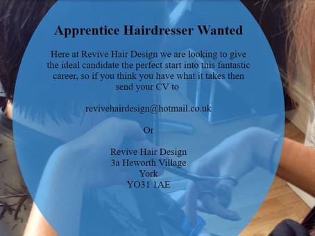Apprentice Wanted at Revive Hair Design