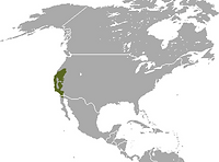 map of borad footed mole territory