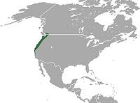 map of american shrew mole territory