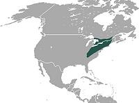 map of hairy taild mole territory