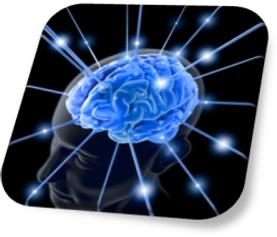 Brain-Mind.png