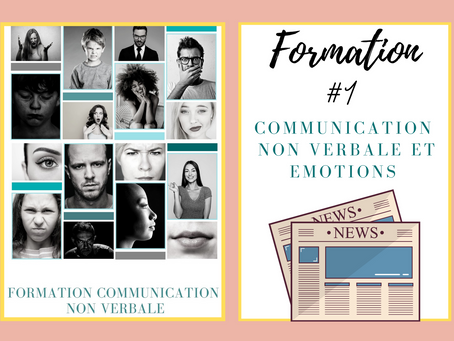 Formation Emotions et Communication non verbale