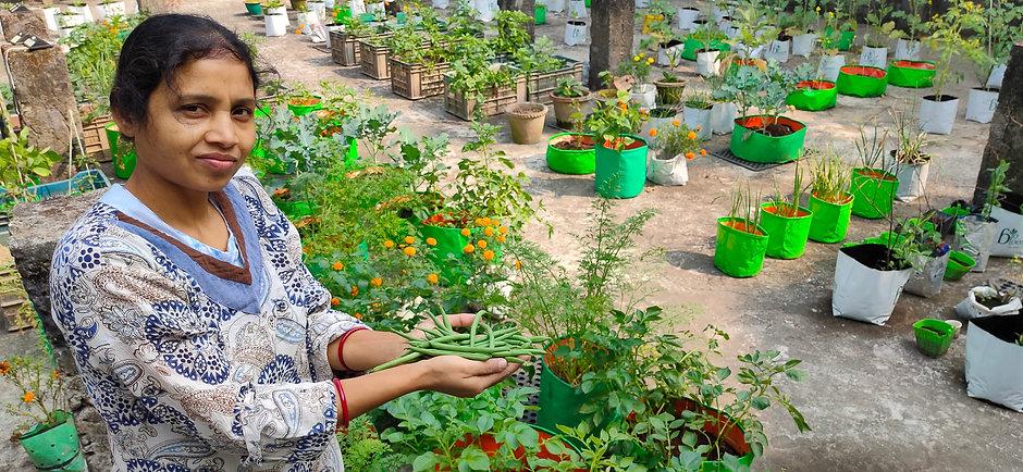 Environmental Volunteering