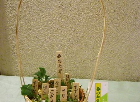 1月7日は「人日の日」 春の七草の由来をご存知でしょうか