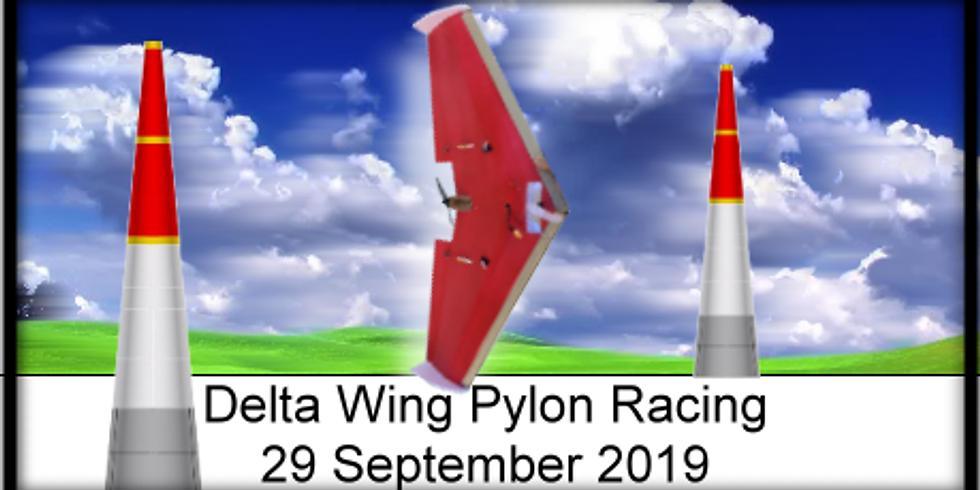 Delta Wing Pylon Racing