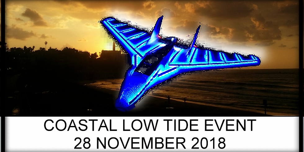 Coastal Low Tide Night Fly